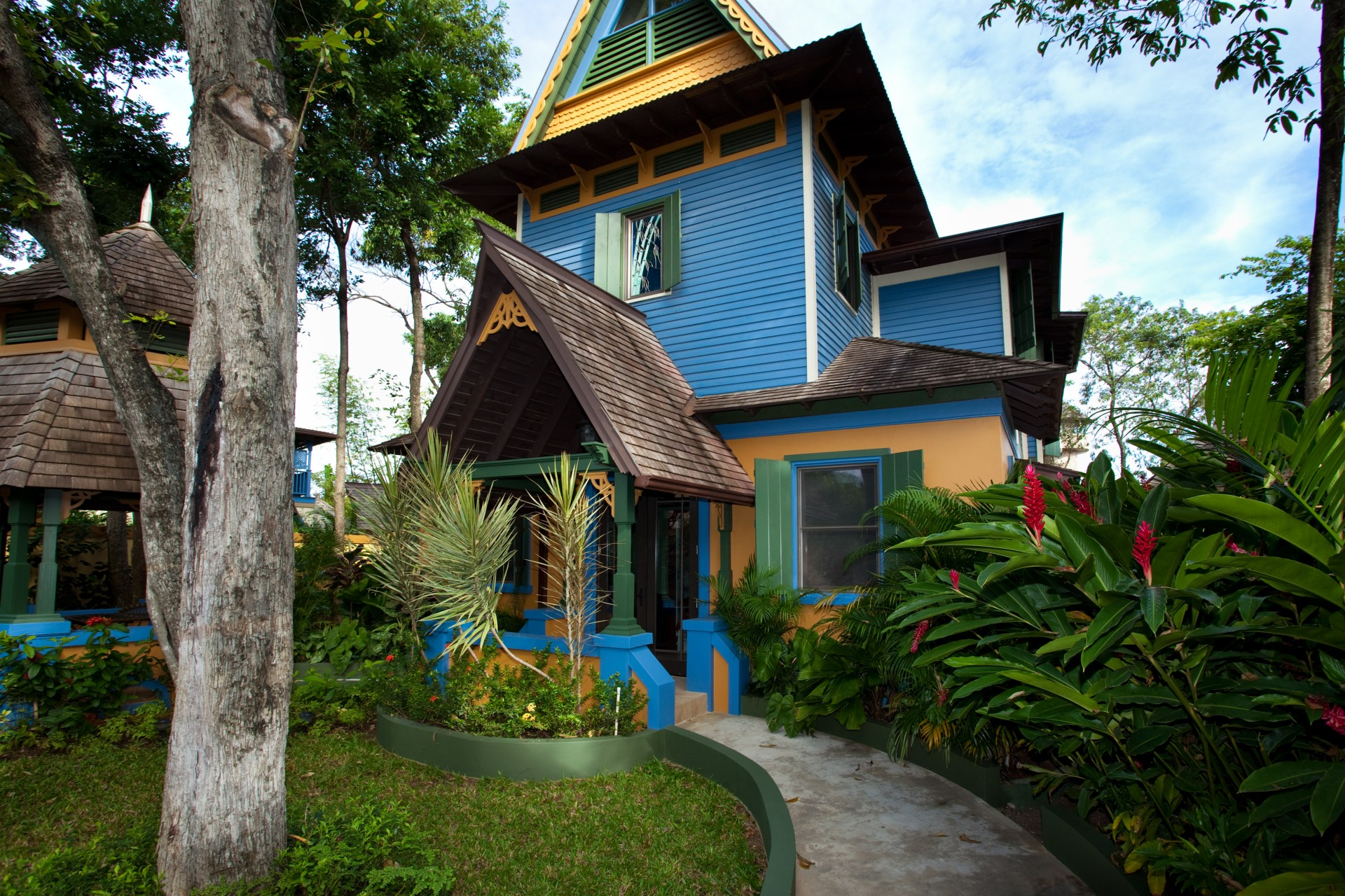 Coconut exterior